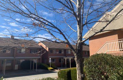 Civium Listing Canberra Archibald Street